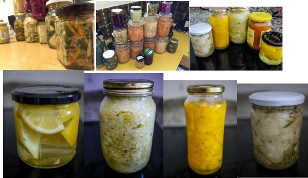 fermentieren.png